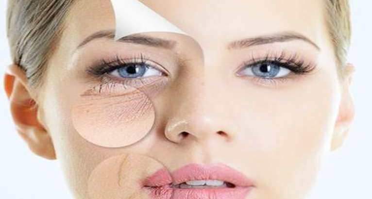 Top 15 Ingredients for Dark Circles, Puffiness, Fine Lines & Wrinkles