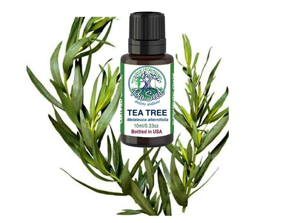 How to Choose the Best Tea Tree Oil?