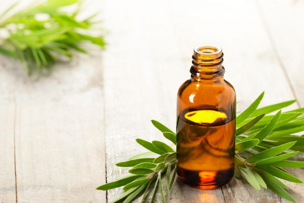 How to Apply Tea Tree Oil?